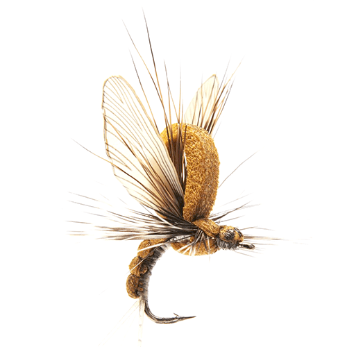 Mayfly Emerger Olive Brown